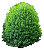 Shrubs, Bushes Icon